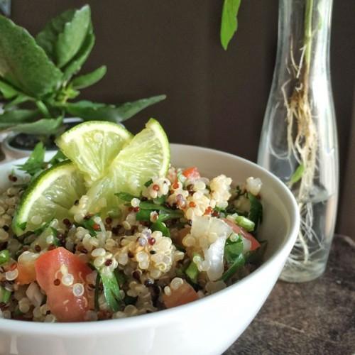 quinoa 2