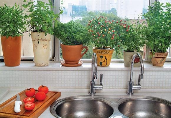 plantas-na-cozinha-1