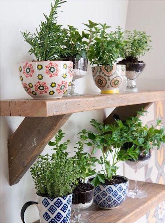 plantas-na-cozinha-7